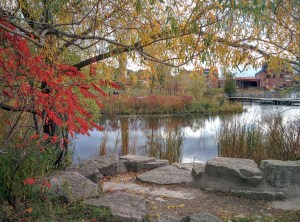 Gratitude for Autumn Glory at the Brickworks