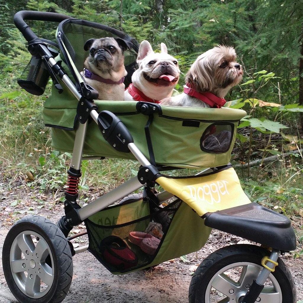 Passeggino per cani: pro e contro