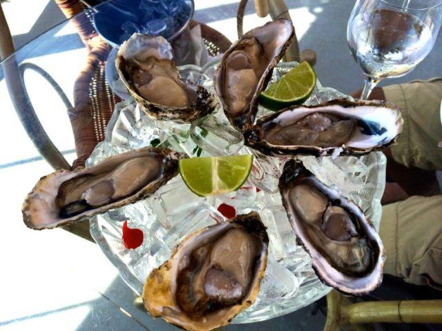 Oysters in Ribeirao da Ilha, Florianopolis