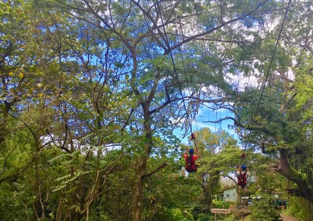 St. Kitts ziplining