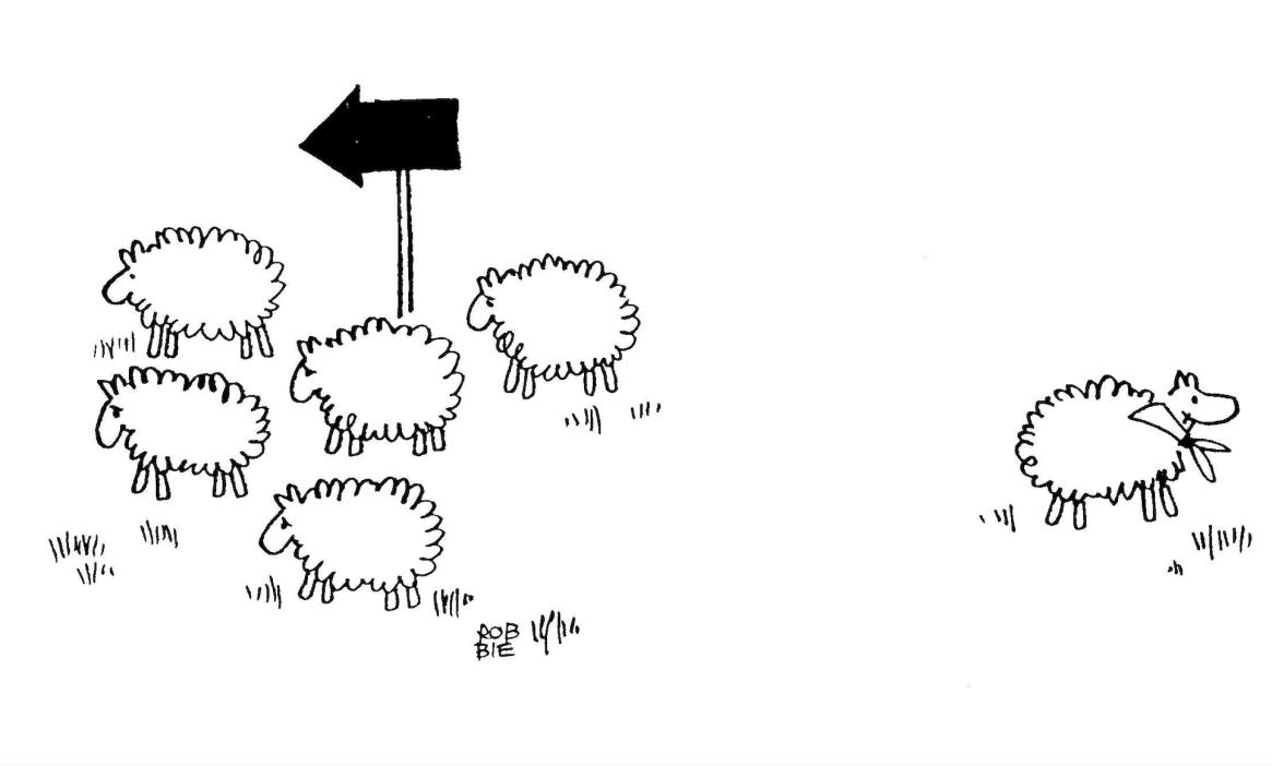 La proposta dello scautismo