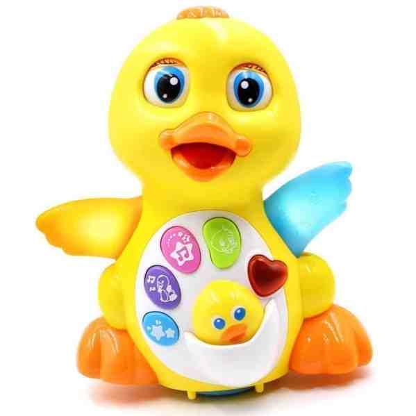noisy duck