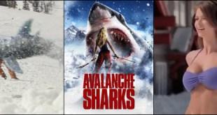 « Avalanche Sharks » : après « Sharknado », les requins font du ski