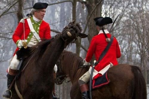 Un cheval toujours souriant sur les photos.