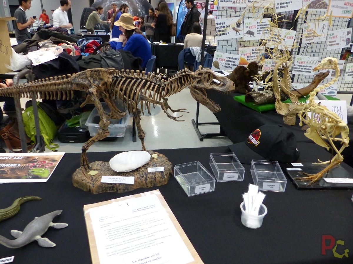 PAF2020 - stand paléontologie