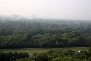 The view from The Oberoi rooftop...beautiful, lush, green Delhi!