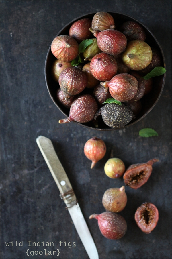 Wild Indian figs {goolar}