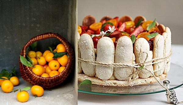 Kumquat & Strawberry Tiramisu Charlotte