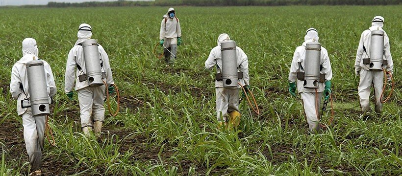 Pesticides-roundup