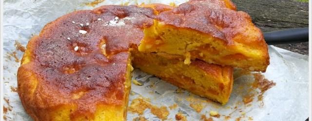 ricetta torta alle albicocche