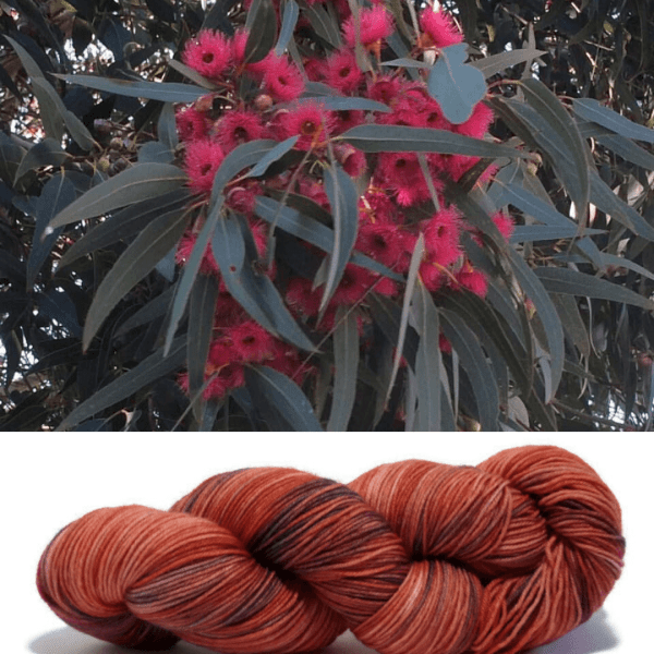 Inspiration for the colourway Flowering Gum