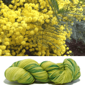 Inspiration for the wattle colourway
