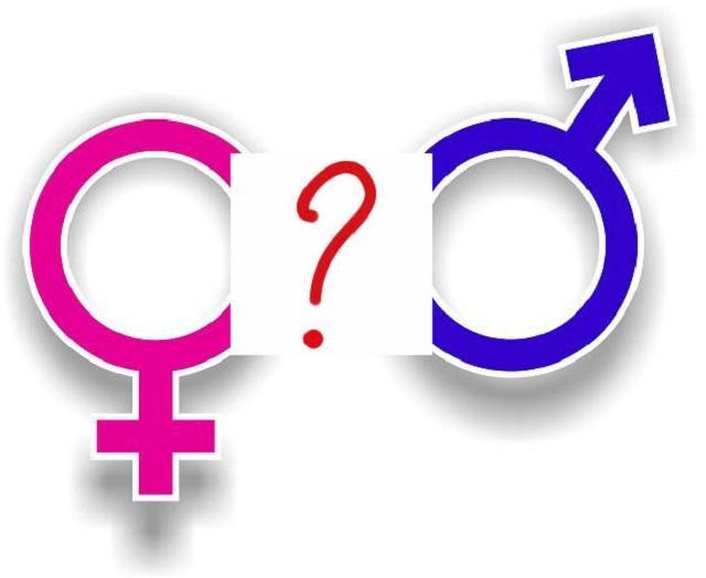 sarà maschio o femmina