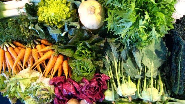 foto_verdure_finocchi_spinaci