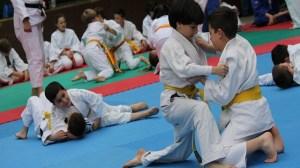 foto_judo