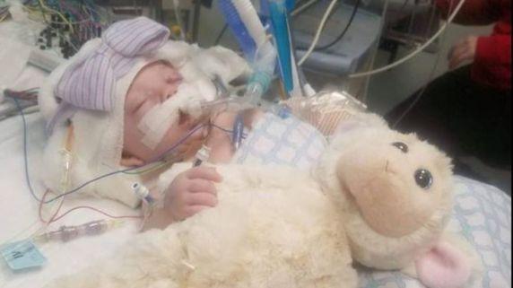 tennessee bimba 3 mesi maltrattata