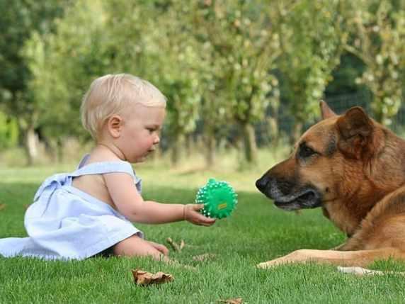 foto bimba e cane