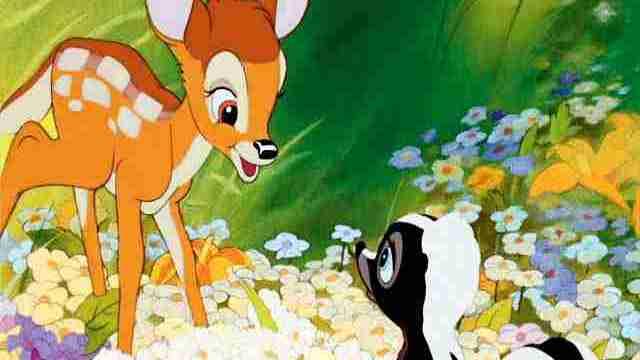 foto bambi e fiore