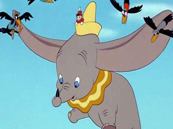 foto Dumbo piuma