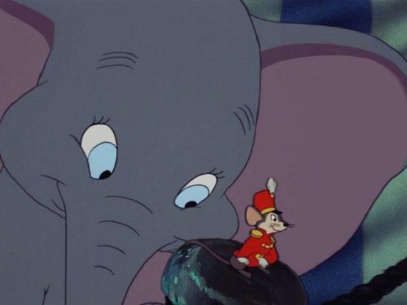 foto Dumbo e Timoteo