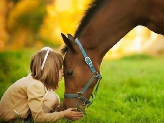 Foto immagini animali e bambini