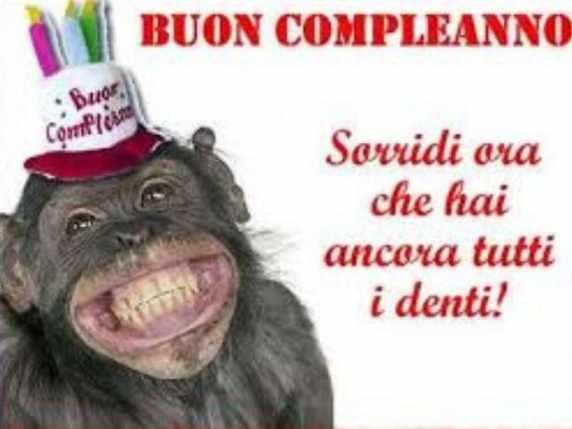 foto immagini spiritose compleanno scimmia