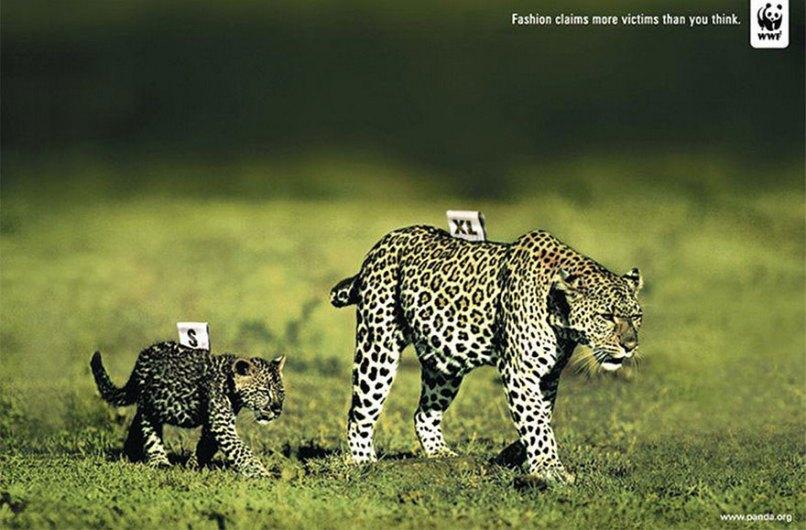 public-social-ads-animals-127[1]