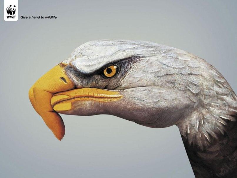 public-social-ads-animals-14[1]