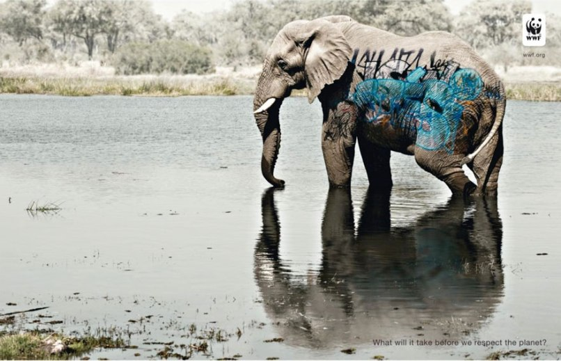 public-social-ads-animals-20[1]