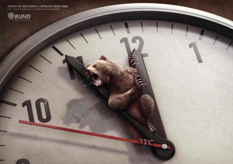 Campagna animalista