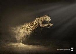 CAMPAGNE ANIMALISTE