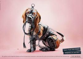 Foundation Tier im Recht - 3D Animals 1-dog