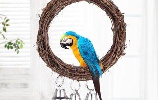 Accessori per le voliere dei pappagalli