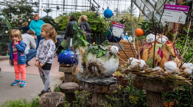 Le Bal des citrouilles Montréal Jardin Botanique