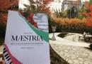 Maestria – récit d'une violoniste et son chirurgien : un livre émouvant