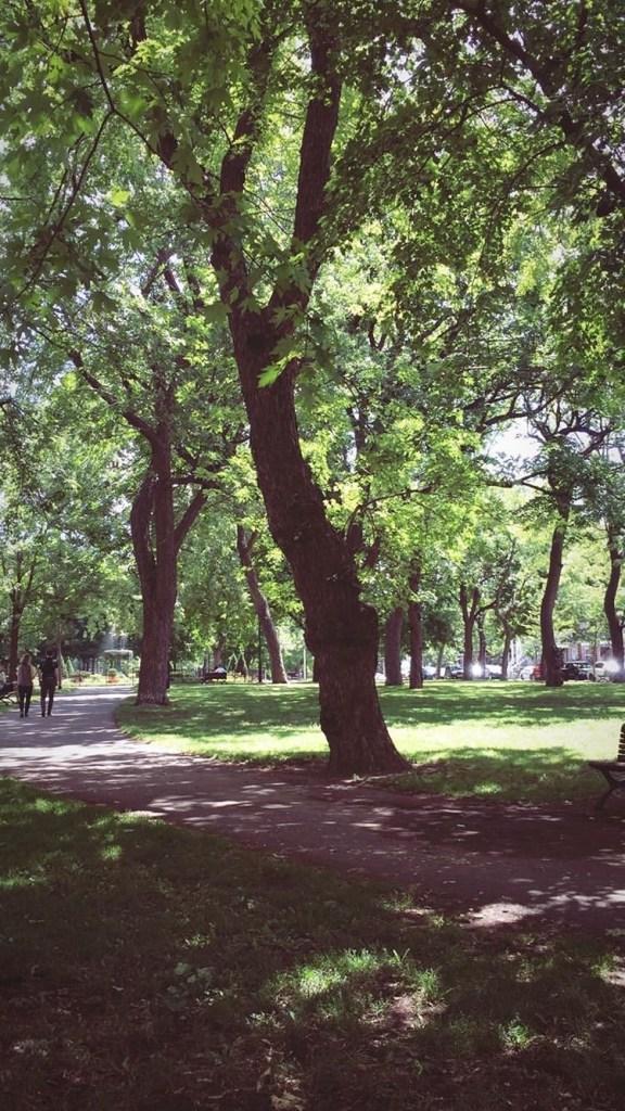 Passion MTL - Gabrielle - parc