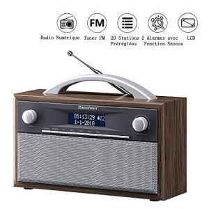Excelvan Radio FM Portable Digital avec Poignée Radio Polyvalent Dab FM Média Main Libre Double Alarme et 20 Préréglages de Station