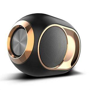 Haut-Parleur Bluetooth sans Fil Portable, Haut-Parleur sans Fil stéréo Haut de Gamme Mini Bass pour la Maison, l'extérieur, Les Voyages