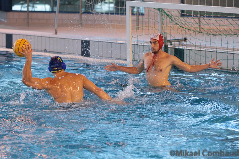 Choisy-le-Roi (N2) finit vainqueur du 8e tournoi organisé par Angers Natation Water-polo Angers.