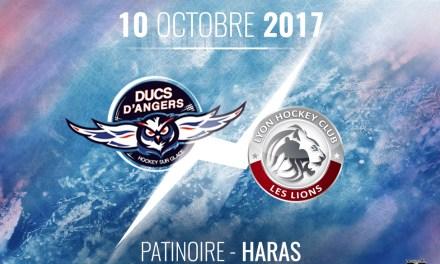 Ligue Magnus (11e journée) : Victoire obligatoire pour les Ducs d'Angers face à Lyon, ce mardi.