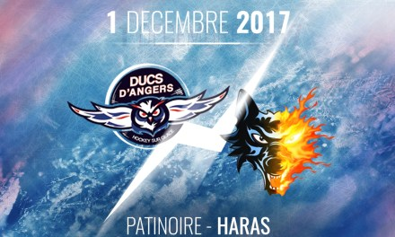 Ligue Magnus (25e journée) : Les Ducs d'Angers reçoivent les Brûleurs de Loup de Grenoble, ce vendredi, à 20h30 !