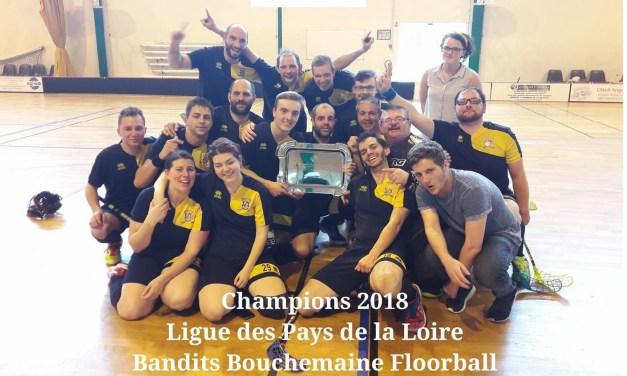 Play-offs de Floorball (Ligue Régionale des Pays de la Loire) : Bouchemaine réaliste un exploit à domicile !