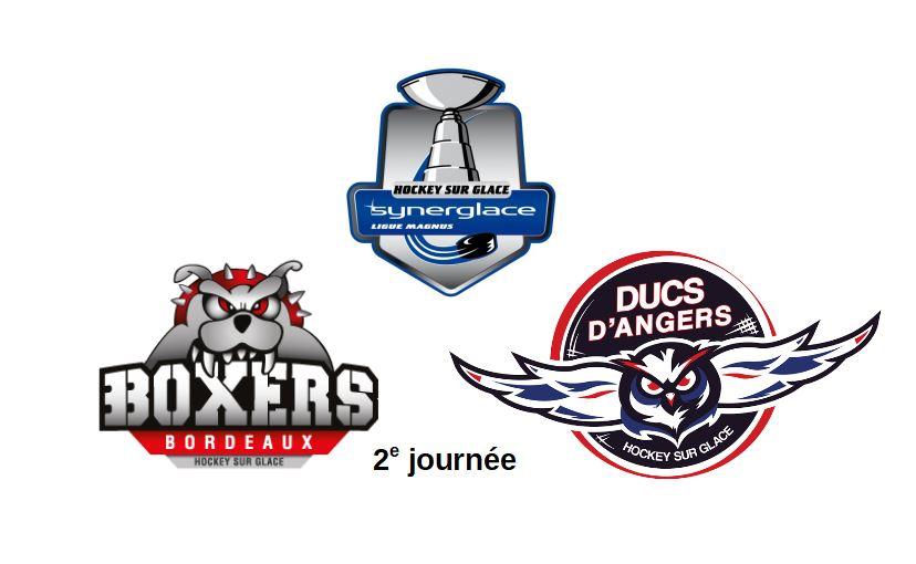 Ligue Magnus (2e journée) : L'heure du rachat pour les Ducs d'Angers à Bordeaux.