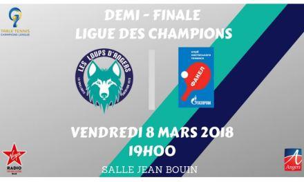 Les Loups d'Angers disputeront une demi-finale historique de Ligue des Champions face à Orenburg !