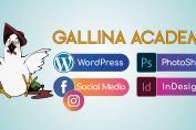 gallina academy