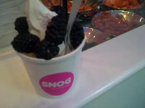 Snog yogurt