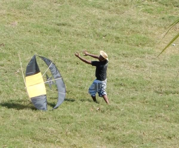 kites crop