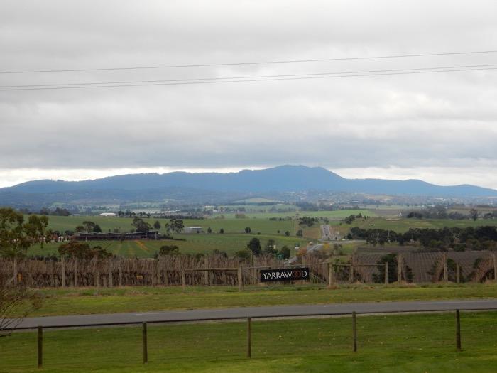 Yarrawood winery 7