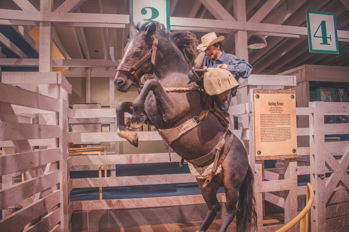 man riding a horse (statue) in Cowboy Museum in OKC