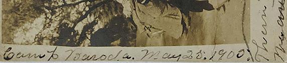 Postcard British Colonial Family In Bullock Cart